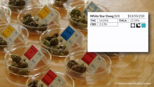 Photo of Different Strains of Medical Marijuana and Corresponding Labels Source: Harborside Health Center, San Jose, California